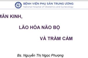 man-kinh-lao-hoa-nao-bo-va-tram-cam